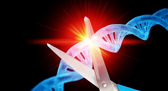Concept image of a scissors cutting a DNA double helix coloured blue.