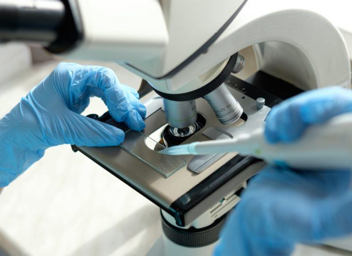 Pair of hands with medical gloves working with microscope, examining a slide.