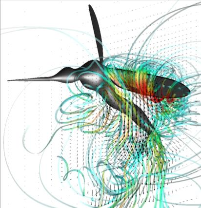 Computer modelling of a mosquito's wings in flight.