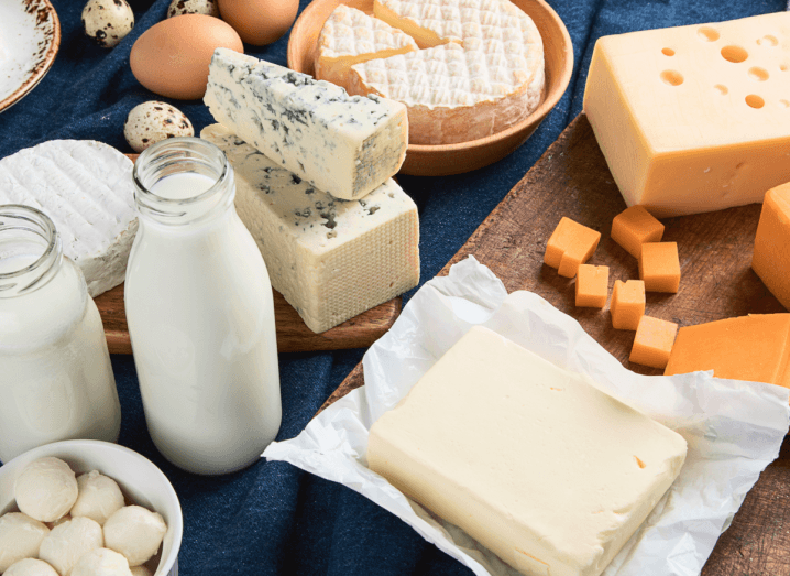 A spread of dairy foods on table with a blue table cloth. The foods include glass bottles of milk, a small bowl of mozzarella balls, some cubes of cheddar, a block of butter, a wheel of cheese and a block of blue cheese. There are some eggs in the background.