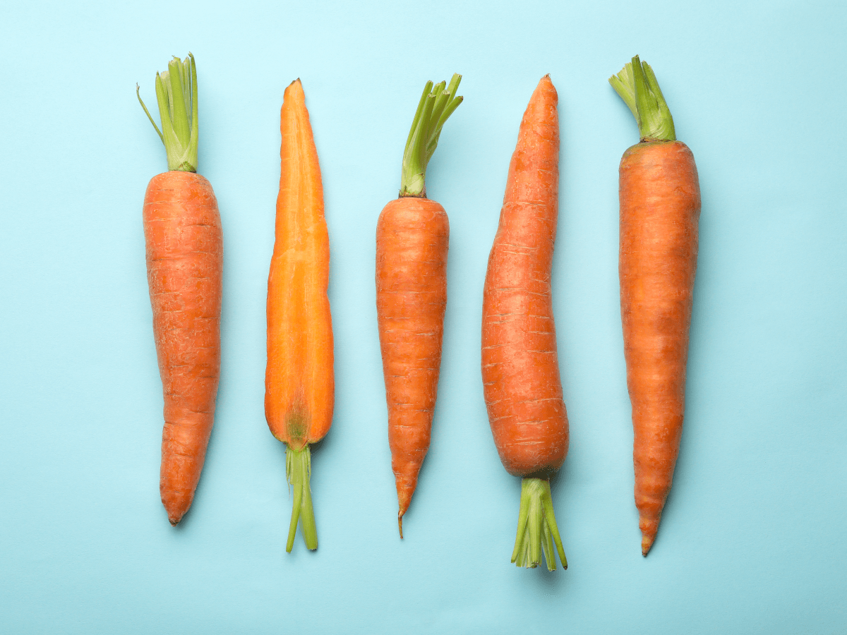 Five differently shaped carrots in a row on a light blue background.
