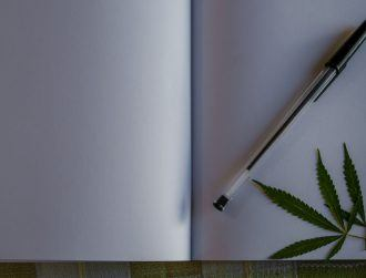 Students in Colorado can now take a course in cannabis