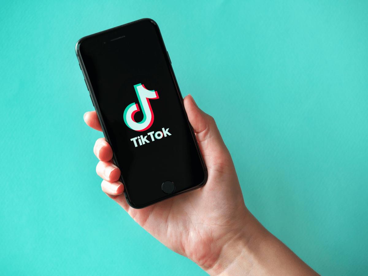 Reddit Ceo Describes Parasitic Tiktok As Spyware