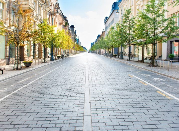 Empty city street lined with trees.