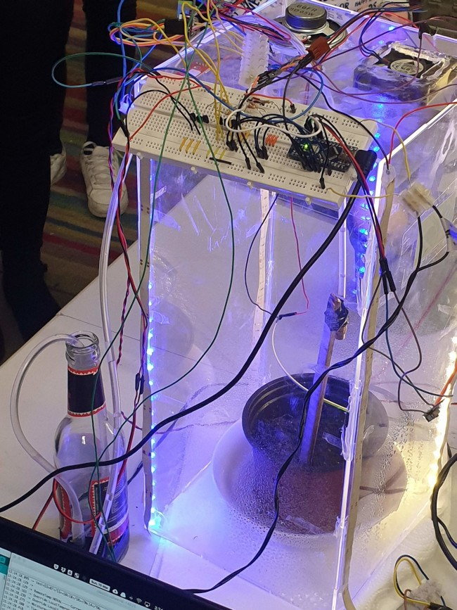 A tall clear box with a lot of wires attached. Inside, a blue light shines on a small potted lemon tree.