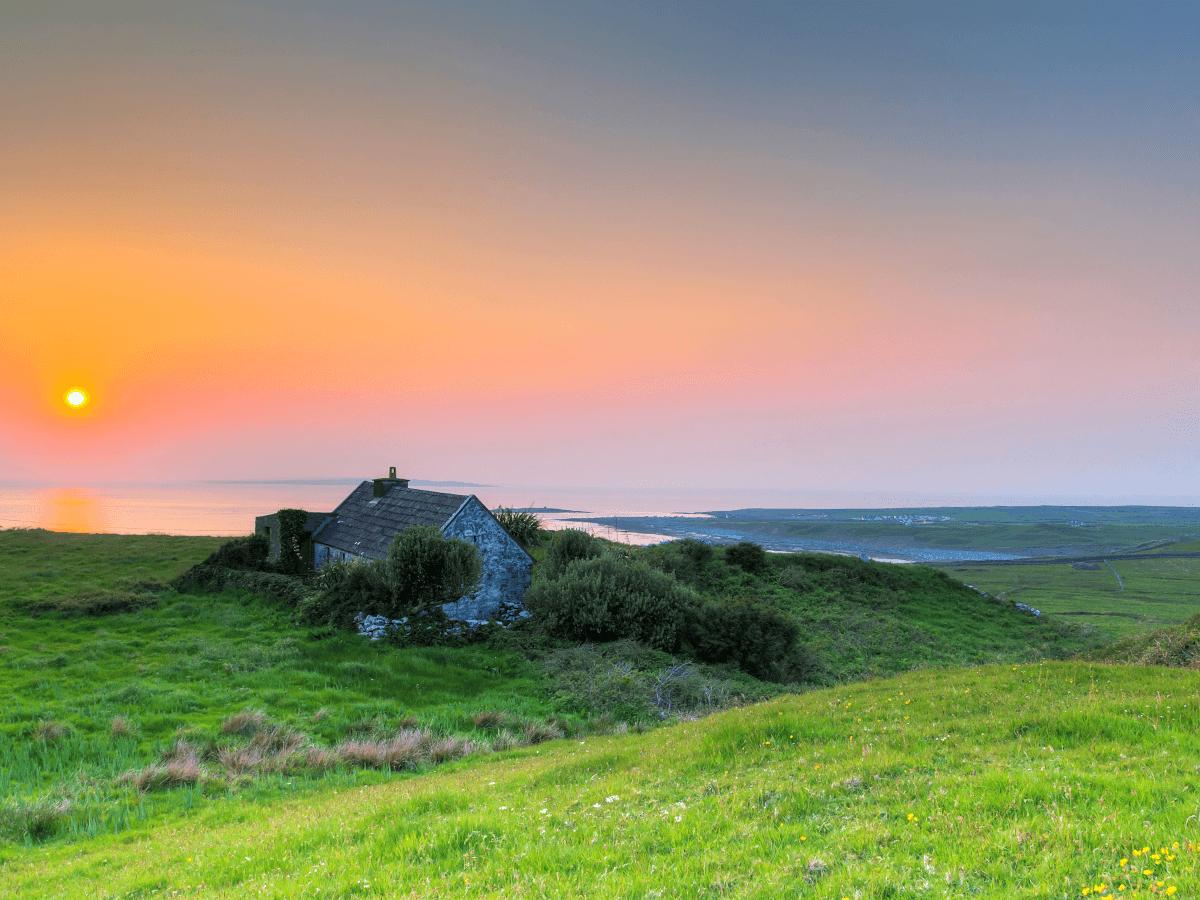 5 promising Irish start-ups focused on sustainability