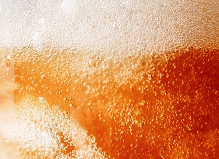 Close-up of a beer glass full of bubbles and beer.
