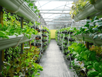 7 urban agriculture start-ups worth keeping an eye on