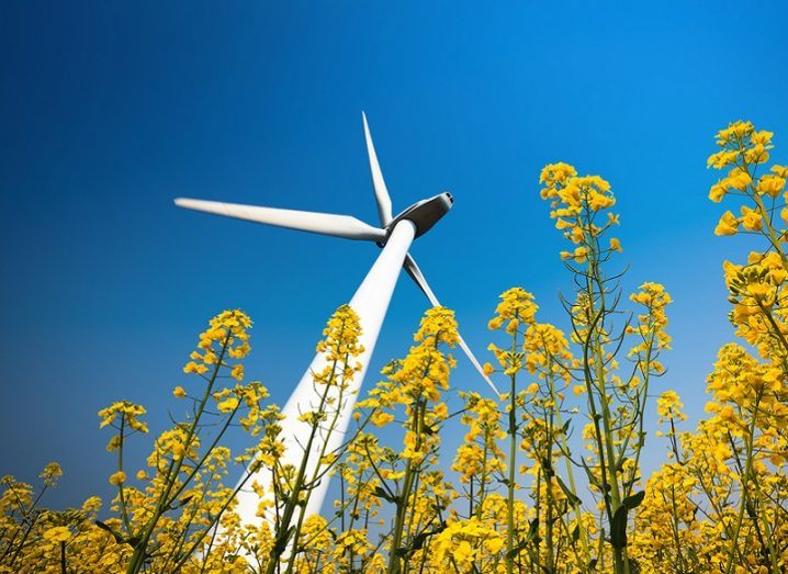 A large wind turbine in a rapeseed field, pictured against a cloudless blue sky.