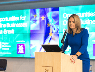 Does Ireland need a digital affairs minister in the next Government?
