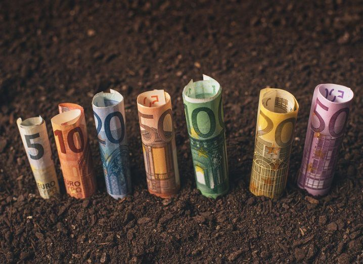 Euro bank notes rolled up and placed into soil to represent start-up funding.