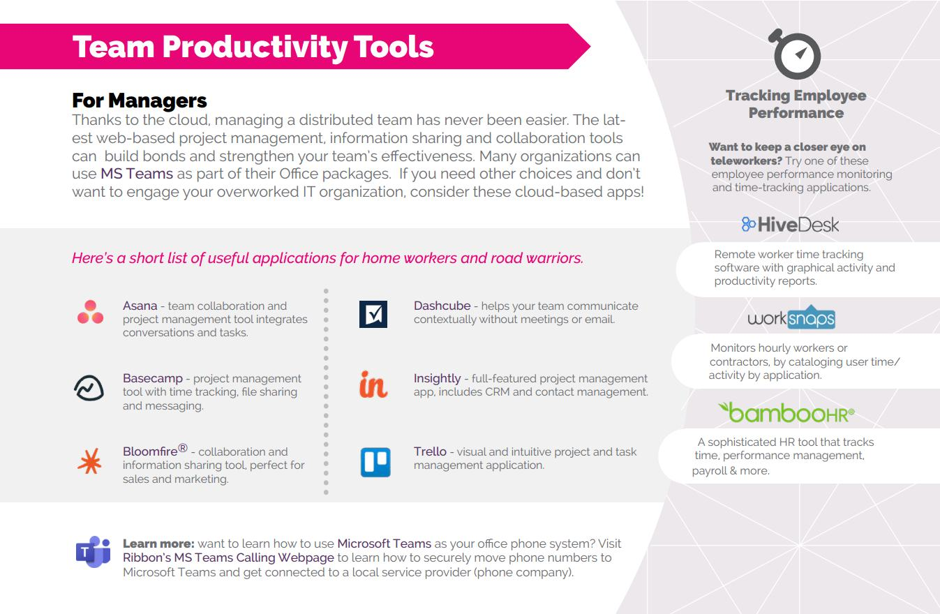 Infographic detailing team productivity tools.