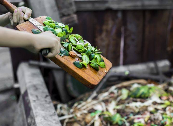 Person holding a chopping board full of food waste being put into a large bin also full of food waste.