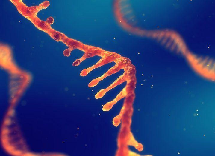 Strand of RNA coloured orange against a blue background.