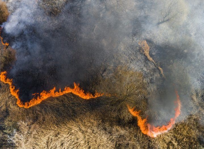Aerial view of a wildfire in a dry, grassy region.