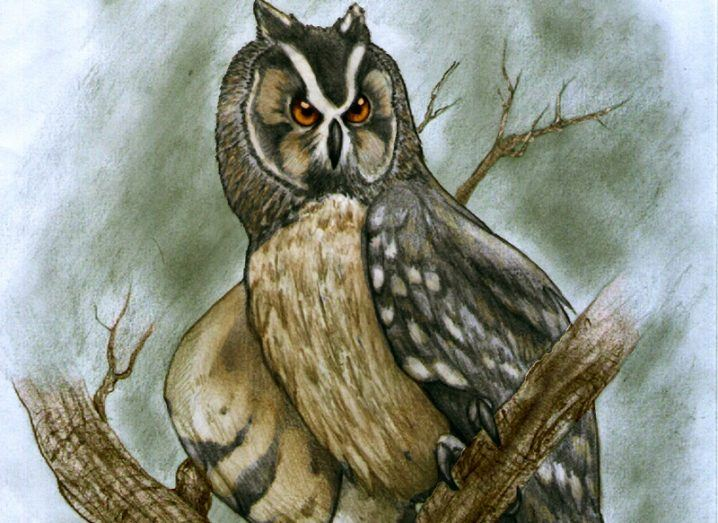 Illustration of the ancient owl sitting on top of a tree stump.