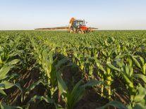 Irish agritech company MagGrow raises €6m for crop-spraying tech