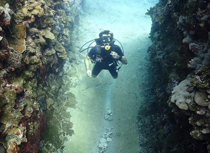 Pietro Marches in a scuba suit in the crevice of a coral reef.