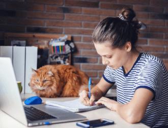 Lambda School raises $74m for online computer science classes