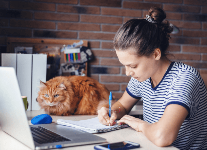 A woman in a navy and white striped T-shirt studies at a laptop with a cat on the desk beside her.