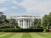 Big Tech backs lawsuit against Trump's immigration decision