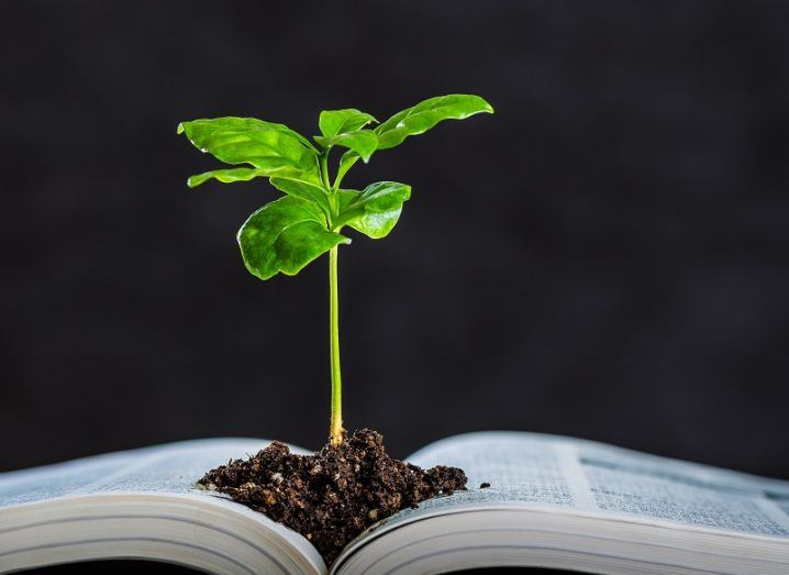 Concept of a green plant growing from a scientific textbook against a black background.
