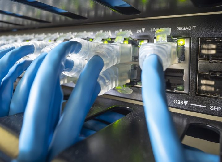 Blue ethernet cables plugged into a server.