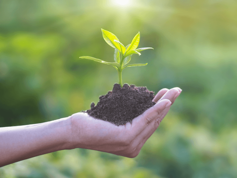 7 start-ups developing eco-friendly tech solutions