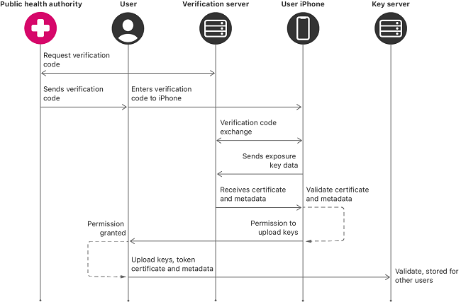 Graph showing how the Exposure Notification Express system works.