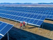 Solar projects now offer 'some of the lowest-cost electricity ever seen'