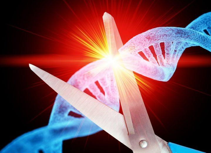 Illustration of a scissors cutting a DNA helix.