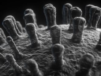 Dublin start-up gets €2.35m to help us see viruses like never before