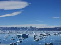 Greenland's ice sheets 'on pace' to melt at fastest rate in 12,000 years