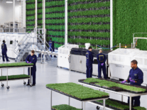 Plenty bags $140m in funding for its indoor farming tech