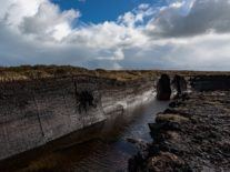 €126m Bord na Móna plan aims to store 100m tonnes of CO2 in peatland