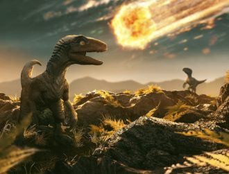 Dinosaurs were not on the way out before asteroid hit, study claims