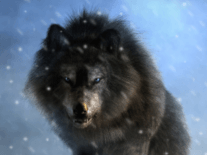 Ancient DNA sheds light on Game of Thrones' dire wolves