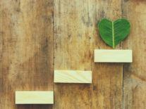 How your company can commit to sustainability