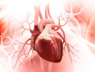 Injectable hydrogel could repair cardiac muscle after heart attacks