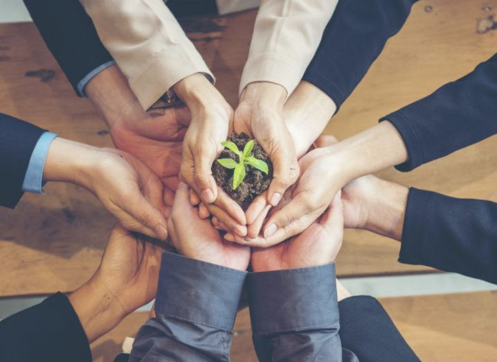A group of people's arms reach in to the centre of a circle, holding a small plant in soil, representing sustainability.