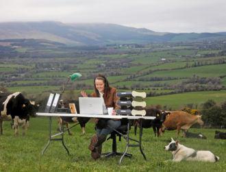 Report: 80pc of Irish farmers turn to tech to enhance operations