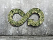 First look at Ireland's plans for a circular economy