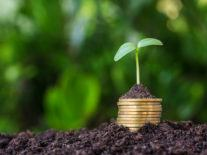 €10m fund to help Irish companies compete in a low-carbon future
