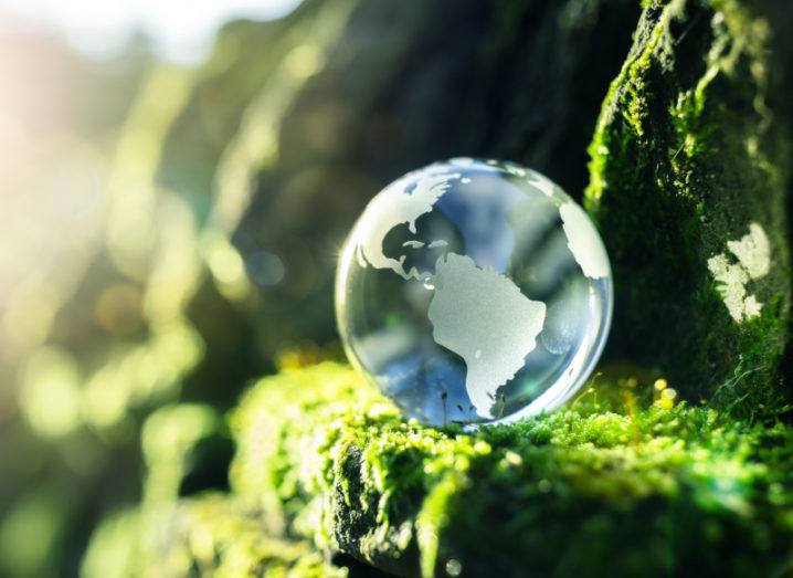 A small glass globe is sitting on a mossy rock in the sunshine.