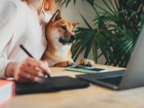 Retraining your brain to work from home