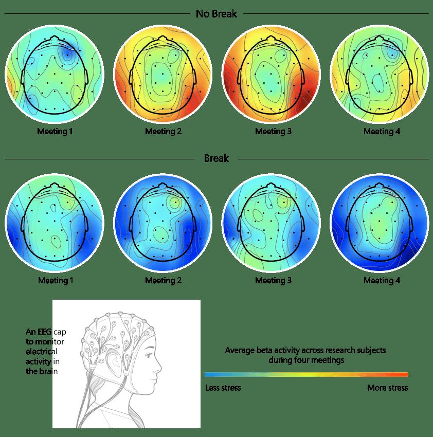 Une infographie montre comment les pauses entre les réunions affectent le cerveau en empêchant une accumulation d'activité des ondes bêta, qui est associée au stress, aidant ainsi à prévenir la fatigue du zoom.