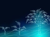 'Digital transformation involves more than technology'