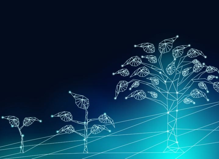 A digital transformation concept showing a digital outline of three stages of a growing tree.