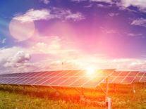 Walking on sunshine: Obton doubles investment in Irish solar energy
