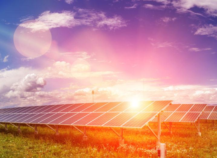 Solar panels at a solar energy plant on a large area of grass under a blue sky with sun flare hitting the surface.